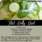 Fat Belly Diet