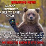 We Need to Know If It's GMO!